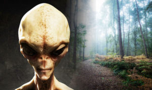 Proof of Aliens? What is the Rendlesham Forest Incident?